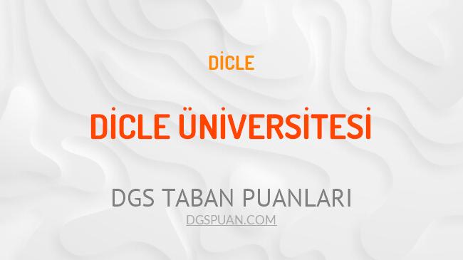 DGS Dicle Üniversitesi 2021 Taban Puanları