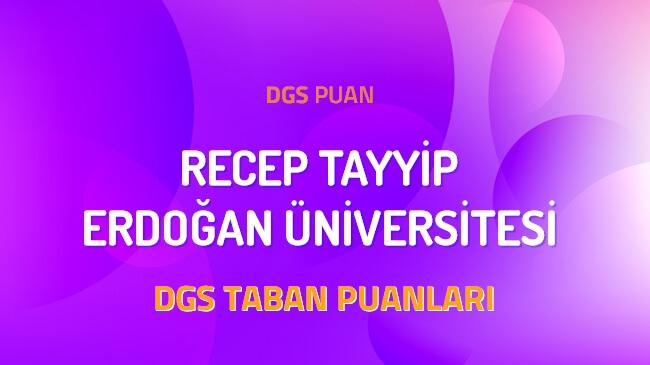 DGS Recep Tayyip Erdoğan Üniversitesi 2022 Taban Puanları
